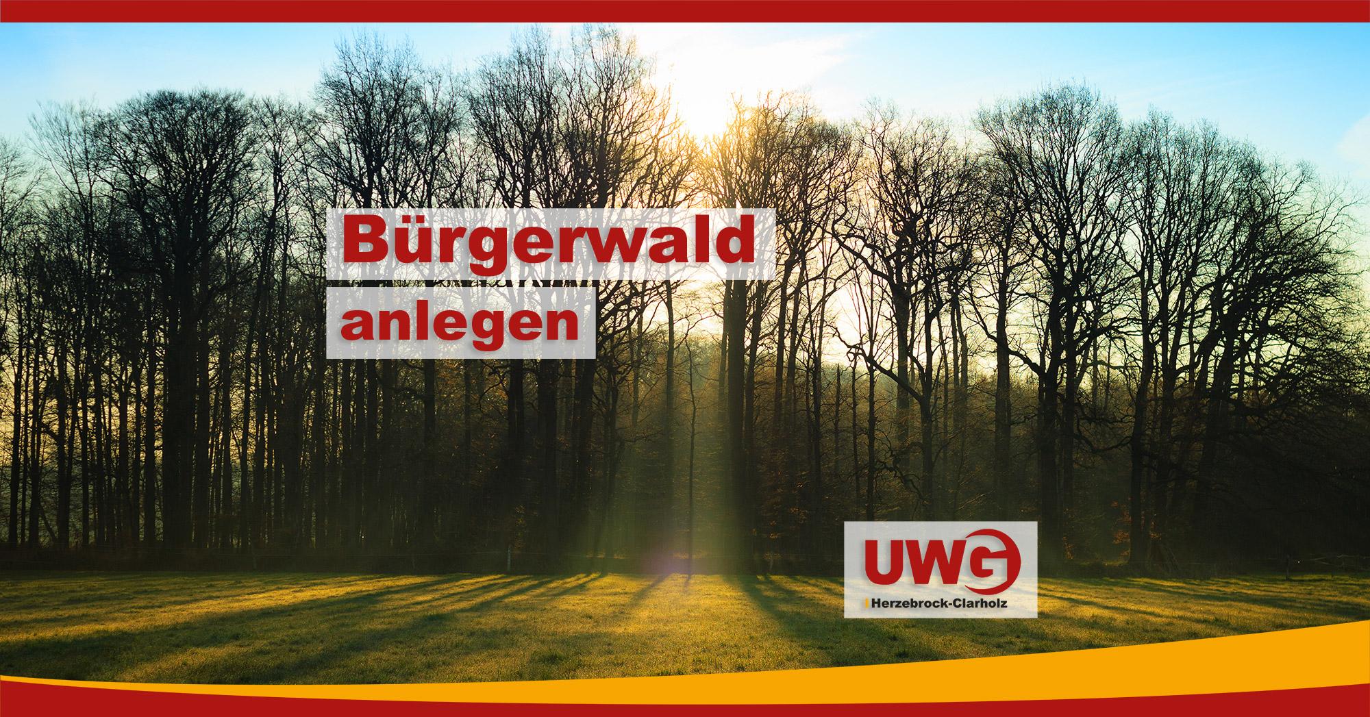 Bürgerwald anlegen